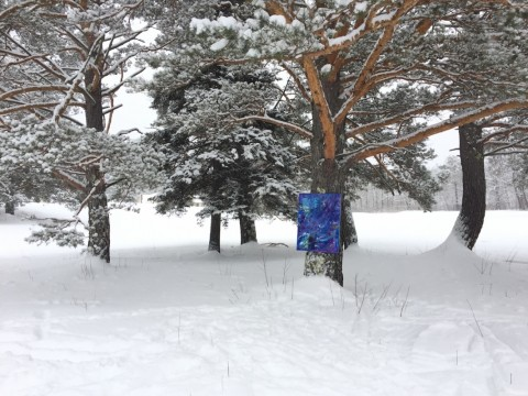 art in the forest at Jackson Ski Touring