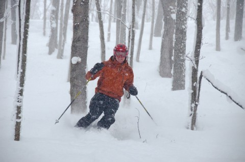 A skier enjoys a run through Boyne Highlands glades.