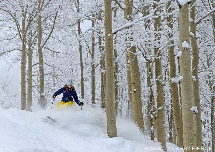 Upper reaches of Steamboat a tree-skiing paradise. (Steamboat/Facebook)