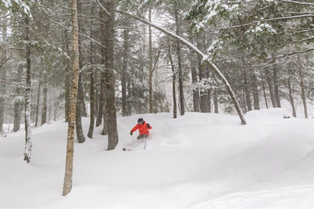 Snow Bomb Explodes With a Powder Day All Over New England