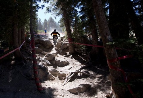 Mammoth mountain biker