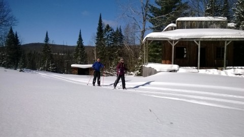 Cross country skiers approach a wilderness cabin at Treetops