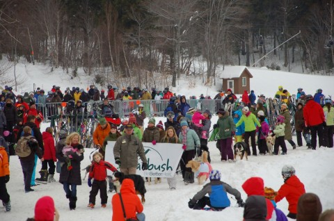 Sugarbush dog parade