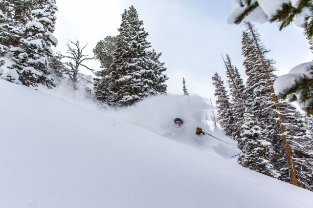 Insider's Guide To Solitude Mountain Resort