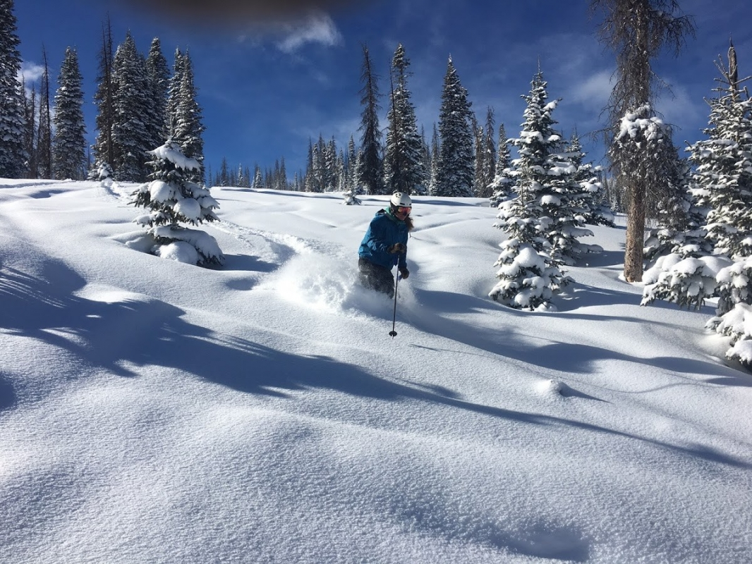 coupons for wolf creek ski area