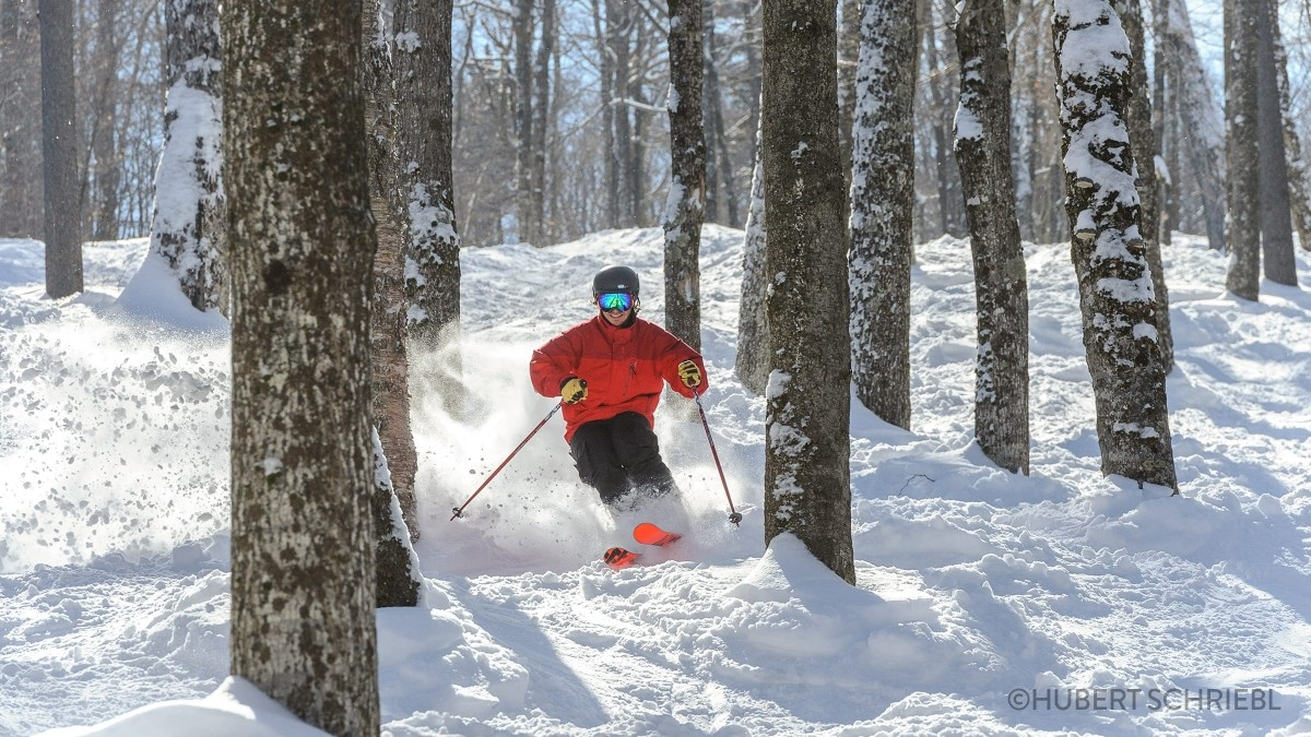 Hitting the trees at Stratton. (Stratton/Hubert Schriebl)