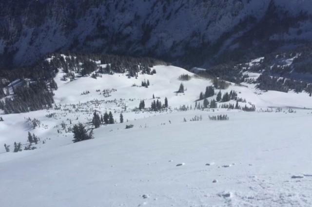 realskiers-wasatch