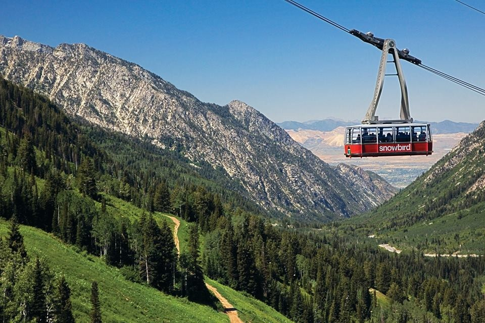 Scenic lift rides a staple for Utah summer visitors. (Snowbird/Facebook)