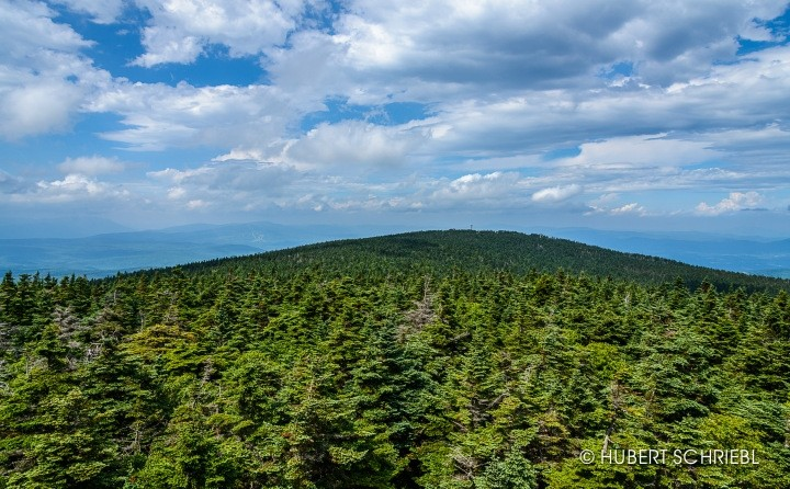 View from atop the fire tower, looking toward the Stratton Summit. (Hubert Schriebl)