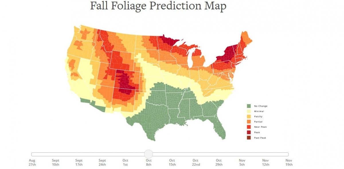 Foliage map prediction by October 8. (smokymountains.com)