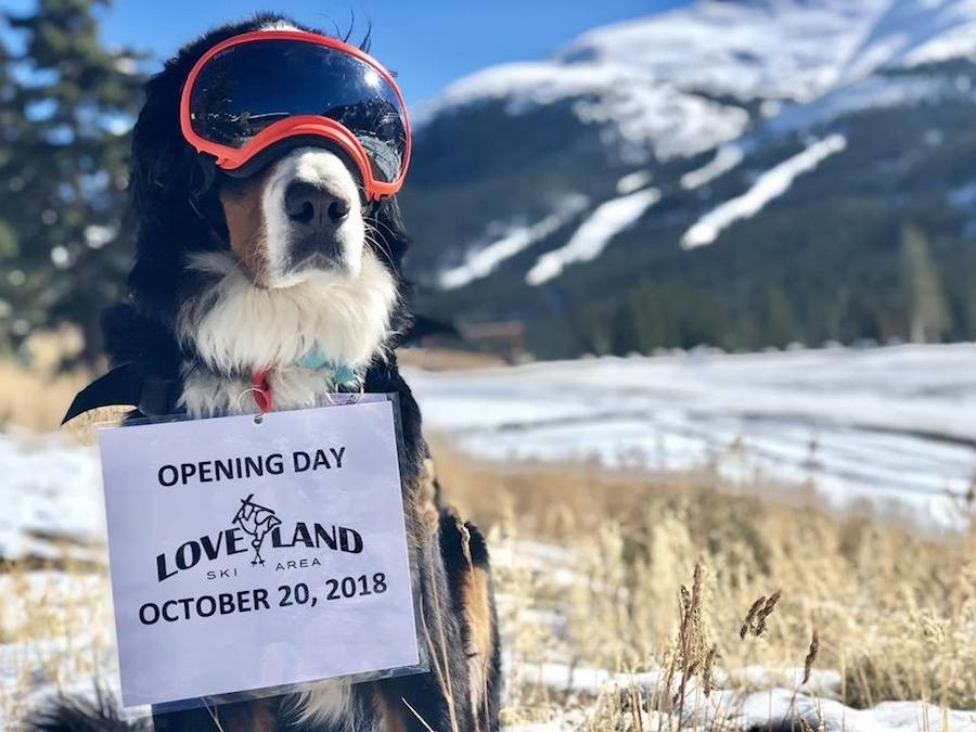 Parker the Snow Dog says get ready for Opening Day 2018. (Loveland/Facebook)