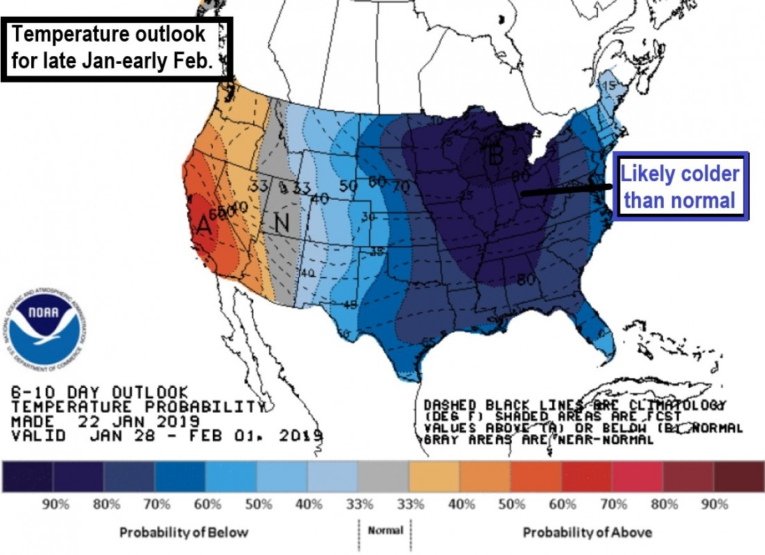 Temperature outlook for late Jan. -early Feb. (NOAA)
