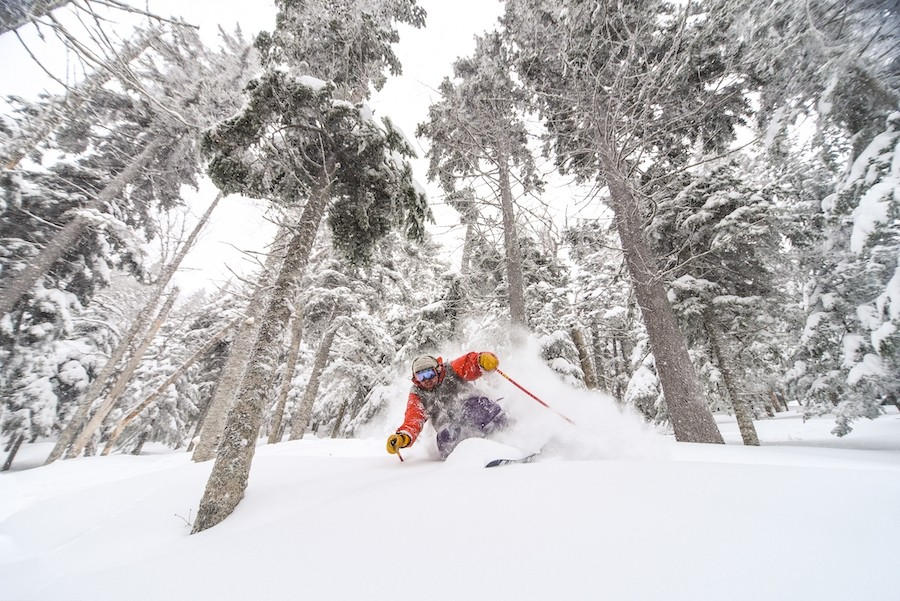Don't miss another Sugarloaf pow day. (Sugarloaf)