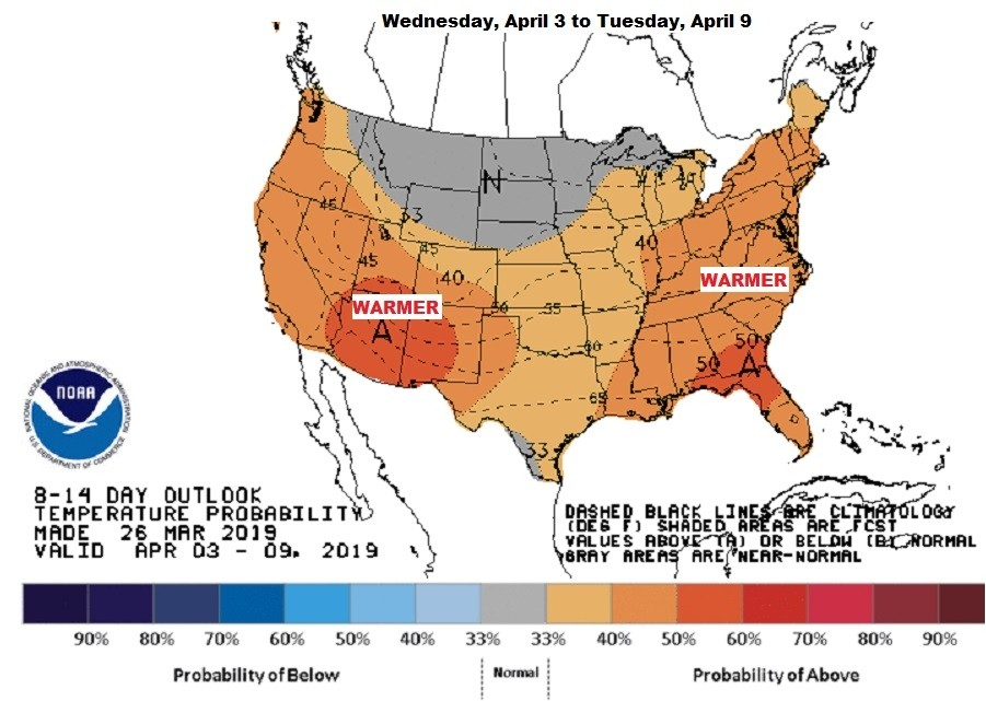 Warmer weather is likely for the first weekend of April. (NOAA/CPC)