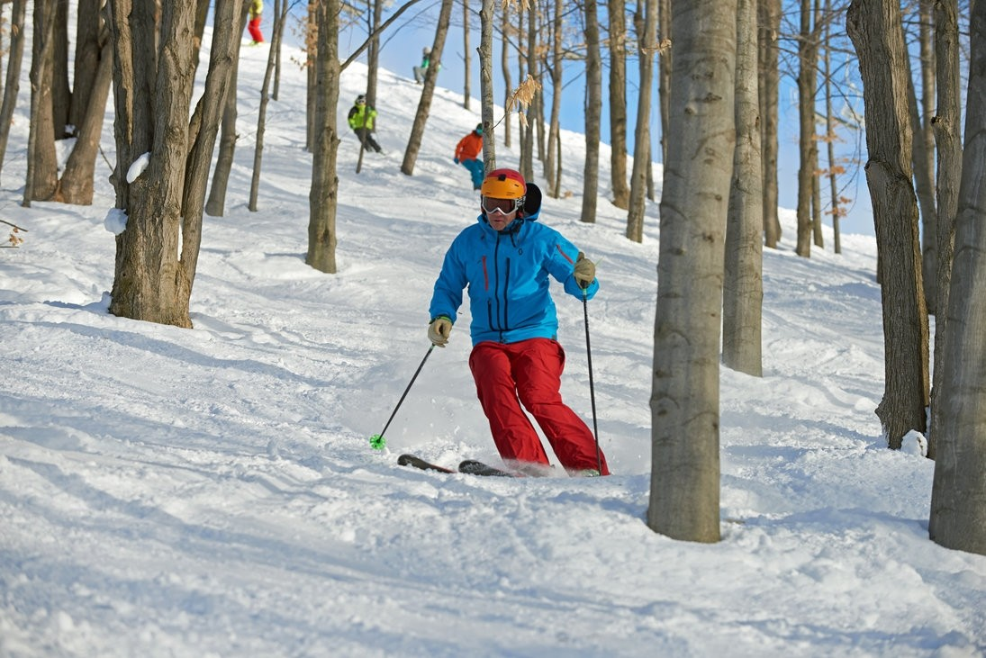 Crystal-Mountain-glade-skiing-Crystal-Mountain-picture