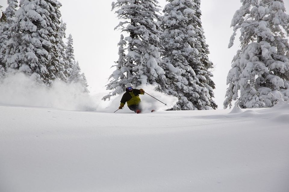 Targhee-Powder-Cover